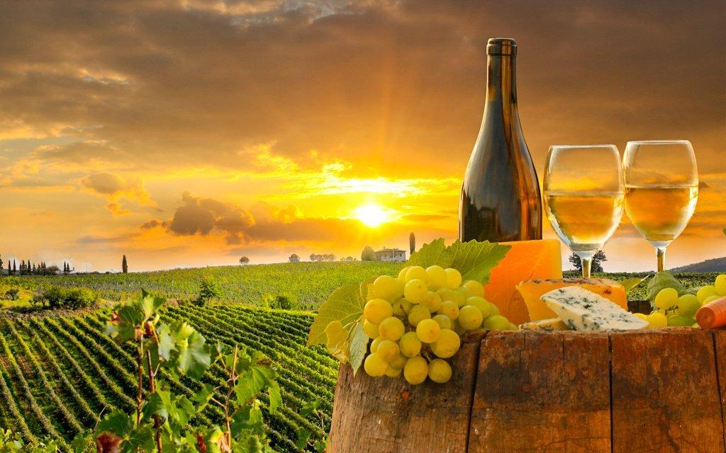 Znojmo  vinařský pobyt s polopenzí a slevou do termálů v Hotelu Bax     728251c395